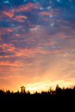 Sunrise over forest sun rays Royalty Free Stock Photography