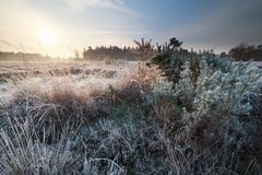 sunrise over frosted meadow Royalty Free Stock Photography