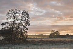 Sunrise Over the Frosty Fields Stock Photo
