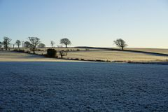 Frosty fields at dawn. Sunrise over frosty grass fields with field boundaries and trees marking the field divisions stock photo