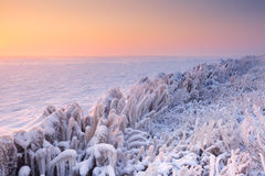 Sunrise over a frozen lake in The Netherlands Royalty Free Stock Photography