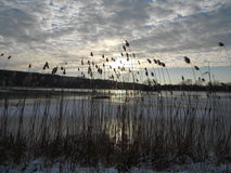 Sunrise over the frozen lake Stock Photos