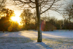 Sunrise over frozen park Stock Image