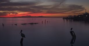 Sunrise Over Galveston Bay Stock Images