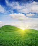 Sunrise over Green Field Royalty Free Stock Image