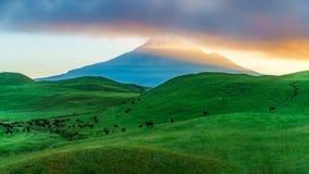 Free Sunrise Over Green Grass, Cone Volcano Mt Taranaki, New Zealand Stock Images - 123405174