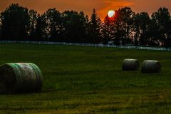 Sunrise over a hay field. Hay bales, Springbok, Alberta, Canada Royalty Free Stock Images