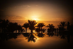 Sunrise over infinity pool and the Red Sea Stock Image