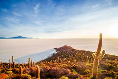 Sunrise over island incahuasi by salt lake Uyuni in Bolivia stock photos