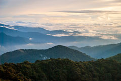 Sunrise over jungle in cameron highlands, Malaysia Stock Photos