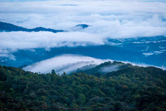 Sunrise over jungle in cameron highlands, Malaysia Stock Images