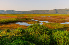 Sunrise over Knysna Lagoon Stock Image