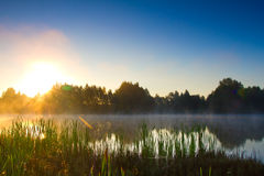Sunrise over lake Royalty Free Stock Images
