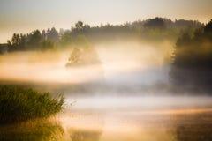 Sunrise over the lake Stock Image