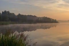 Sunrise over lake. Foggy mid-morning over lake royalty free stock photography