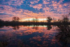 Sunrise over the lake with reflection of bare trees in the water. Stock Photos