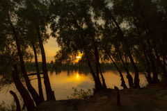 Sunrise over the lake with reflection of bare trees in the water. Royalty Free Stock Photo
