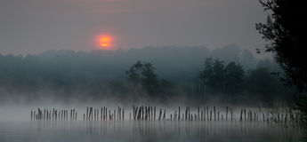 Sunrise over Lake Sanguinet 2. Orange sun rising over Lac de Sanguinet in Landes department of South West France.  Wooden posts in water are reflected in mist Stock Photo