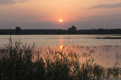 Sunrise over the lake Royalty Free Stock Photography