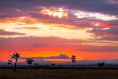 Sunrise over the Mara. Sunrise over the Masai Mara, Kenya. Trees silhouetted against the hills of the Oldoinyio escarpment also called Oloololo or Siria Stock Photos