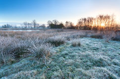 Sunrise over marsh in cold morning Stock Photo