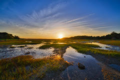 Sunrise over a marsh at low tide. This is a sunset over a marsh in Botany Bay Plantation in South Carolina Stock Image