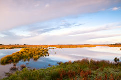 Sunrise over marshes in Drenthe Royalty Free Stock Images
