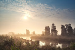 Sunrise over misty bog Royalty Free Stock Image