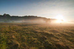 Sunrise over the misty field Royalty Free Stock Photos