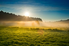 Sunrise over the misty field stock photo