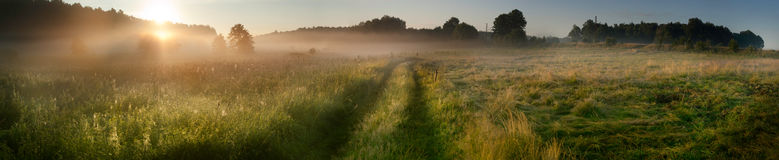 Sunrise over the misty field Royalty Free Stock Photography