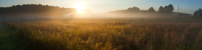 Sunrise over the misty field Royalty Free Stock Image