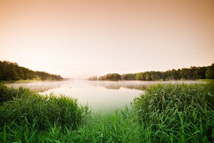Sunrise over the misty lake Royalty Free Stock Image