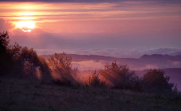 Sunrise over misty meadows Royalty Free Stock Images