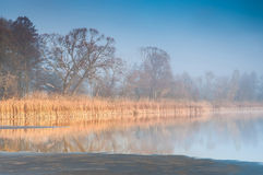 Sunrise over a misty pond Stock Images