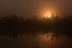Sunrise over the misty pond Royalty Free Stock Photos