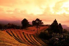 Sunrise over mountain range. At Hua Nam Dang National Park, Chiang Mai, Thailand Royalty Free Stock Photo