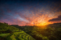 Sunrise over the mountainlandscape view Royalty Free Stock Images