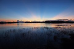 Sunrise over Nine Mile Pond in Everglades National Park. Sunrise with distinct sun rays over Nine Mile Pond in Everglades National Park, Florida royalty free stock photos