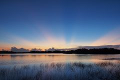 Sunrise over Nine Mile Pond in Everglades National Park. Sunrise with distinct sun rays over Nine Mile Pond in Everglades National Park, Florida stock image