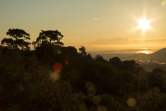 A sunrise over the ocean. A beautiful sunrise sunset over the sea. Big trees ar in the foreground Stock Images