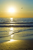 Sunrise over the ocean. Beautiful sunrise over the ocean on a winters morning at low tide Stock Image