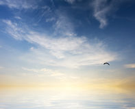 Sunrise over ocean. Nature composition Royalty Free Stock Images