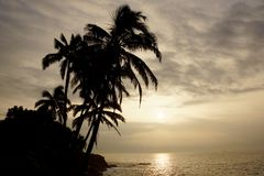 Sunrise over the ocean with waves crashing along rocky shore. On a voggy Big Island Hawaii day with coconut trees palm silhouette hanging over the water Stock Images