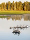 Sunrise over a peaceful lake in Yellowstone National Park. Royalty Free Stock Photos