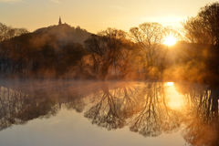 Sunrise over the pond Royalty Free Stock Photography