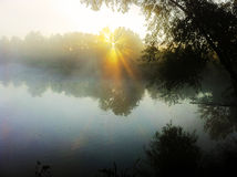 Sunrise over pond Stock Images