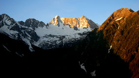 Sunrise over Presanella. In the National Park Adamello-Brenta-Italian Alps Royalty Free Stock Photos
