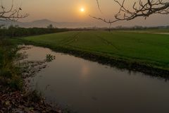 Sunrise over the rice field and the canal besides. royalty free stock photography