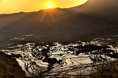 Sunrise over the rice terrace in Yuanyang, Yunnan, China Stock Photography